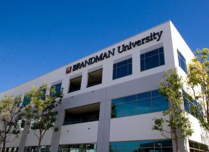 brand man university online social work degree
